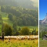 L'agritourisme une nouvelle tendance locale