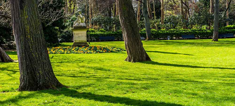 Parks and gardens in Paris: our selection for an event and going green