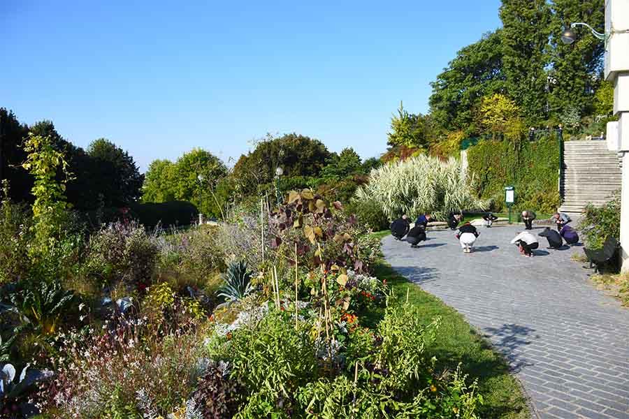 jardins à Paris parc de Belleville
