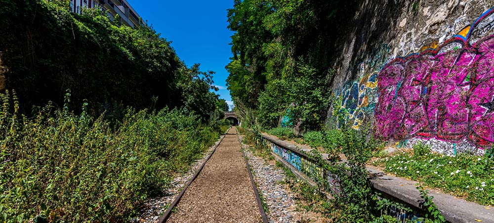 Exploration of the Petite ceinture in the west side of Paris (14, 15 et 16th district)